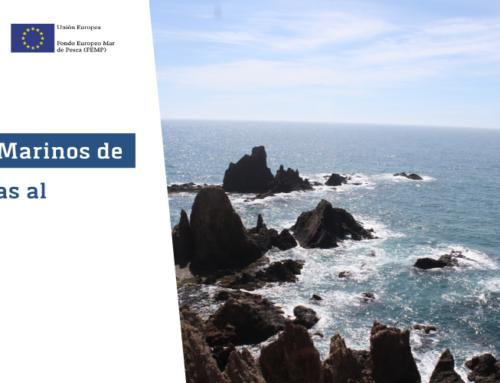 Se celebra el último taller para el mapeo de servicios ecosistémicos marinos en áreas naturales protegidas